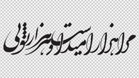 وکتور شعر مرا هزار امید است و هر هزار تویی
